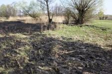 Wypalanie traw – policja ostrzega
