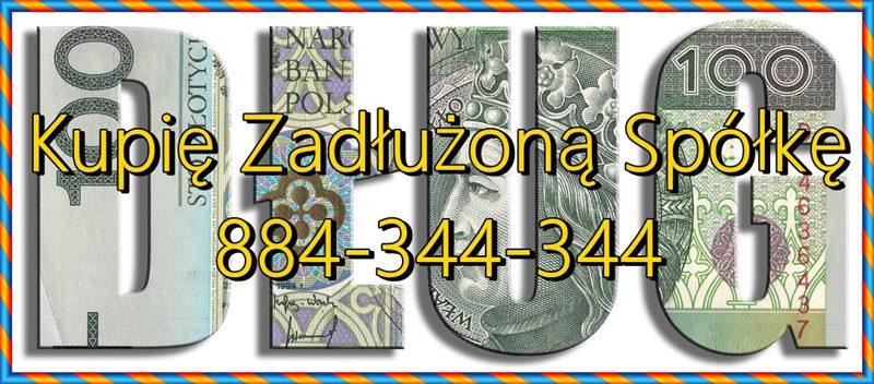Zadłużona Spółka Zakup - Ochrona Podatkowa i 299 ksh